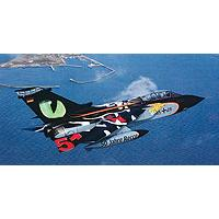 Revell maketa Tornado Tigermeet - Eye ot the Tiger RV04695/120 - Kliknite za detalje