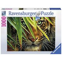 Ravensburger puzzle Animal Kingdom Collection - Mysterious Tiger 1000 delova RA19486 - Kliknite za detalje