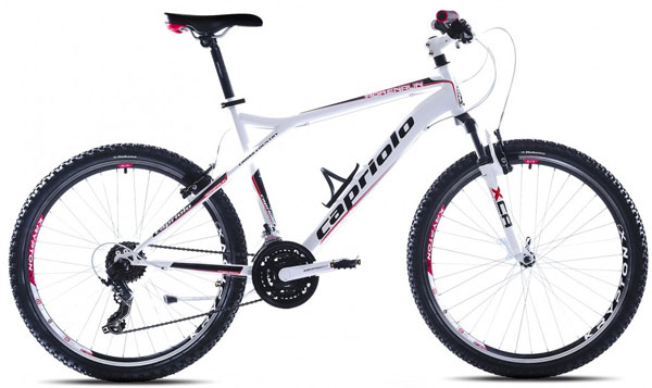Mountain Bike MTB ADRENALIN 26/21HT  905432-22
