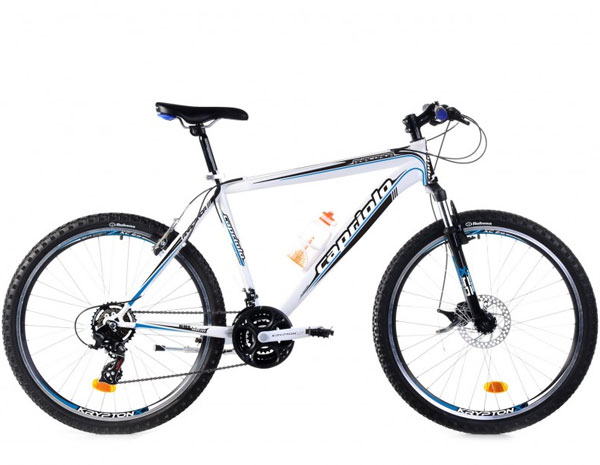 Mountain Bike MTB Anaconda 26/21HT bela-crna-plava 905420-20